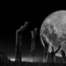 L'escarbat-i-la-lluna01